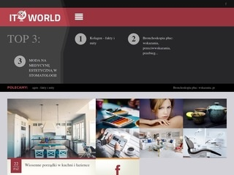 Itcworld.pl - endoskop techniczny - IT Concepts