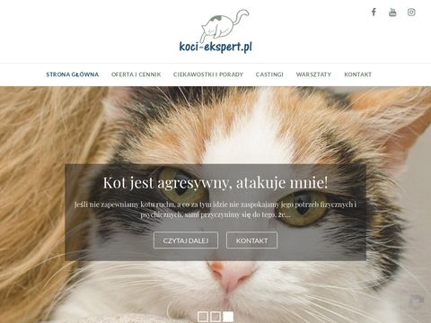 Koci-ekspert.pl behawiorysta z Krakowa