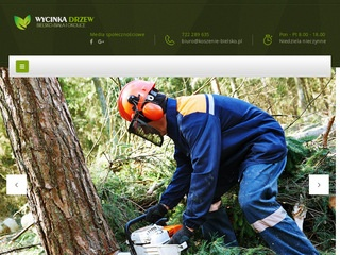Koszenie-bielsko.pl trawy wycinka drzew