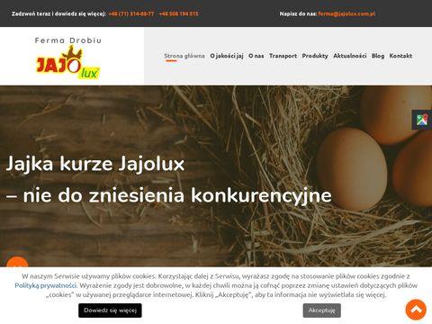 JAJOLUX sprzedaż jajek