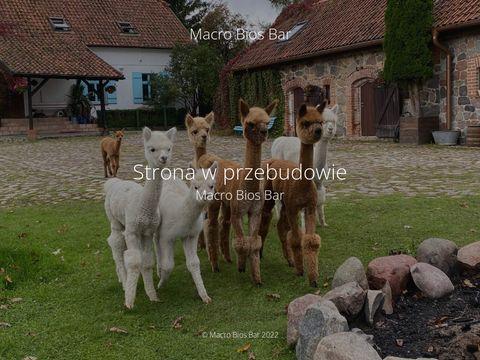 Macrobiosbar.pl menu bez glutenu