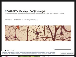 Nootropy.wordpress.com - blog o suplementach