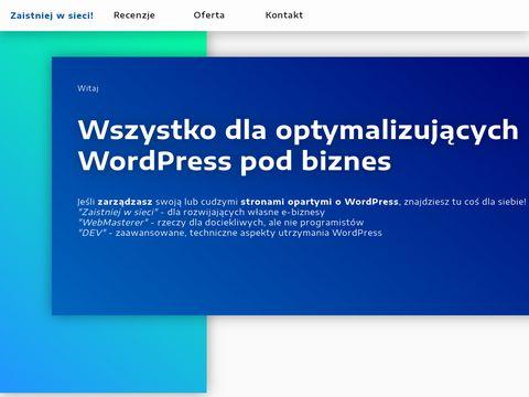 Nebuso.com audyt SEO