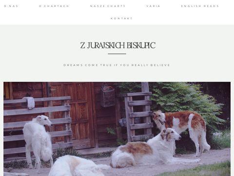 Charty.pl hodowla chartów z Jurajskich Biskupic