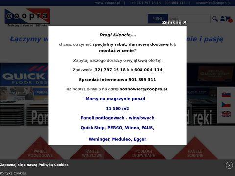 Coopra.pl drzwi wejściowe