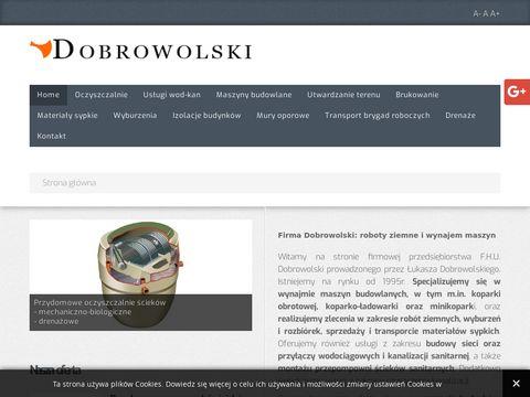 Dobrowolski