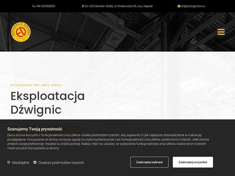 Dzwignice.eu profesjonalne urządzenia dźwignicowe