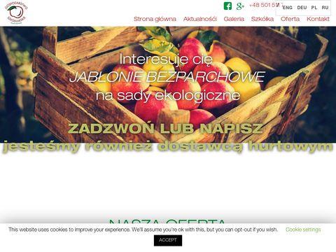 Drzewkaowocowe.com sadzonki jabłoni