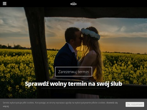 Fotografiasikora.pl zdjęcia ślubne Włocławek