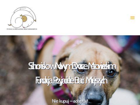 Fundacjapsom.pl Jabłonna k/Warszawy