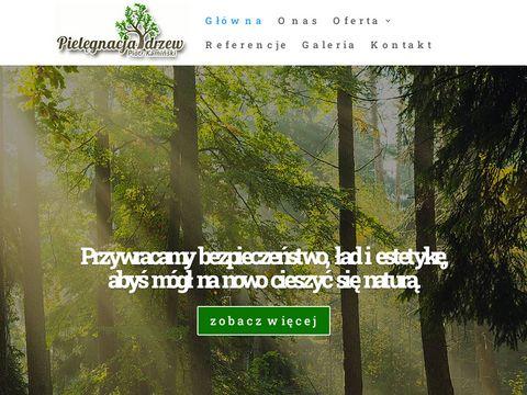 Przycinanie drzew - pielegnacjadrzew.com.pl