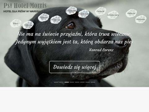 Psihotelmorris.pl hotel dla zwierząt
