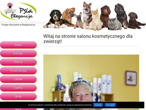 Psia Elegancja - pielęgnacja psów w Bydgoszczy