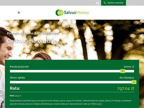 Salvusmoney.pl pożyczka z poręczycielem online