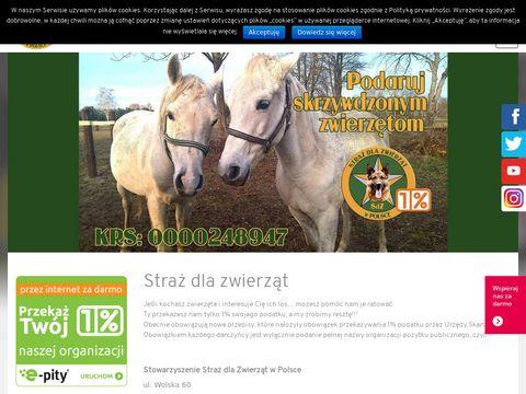 Sdz.org.pl