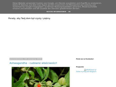 Radydomowe.blogspot.com