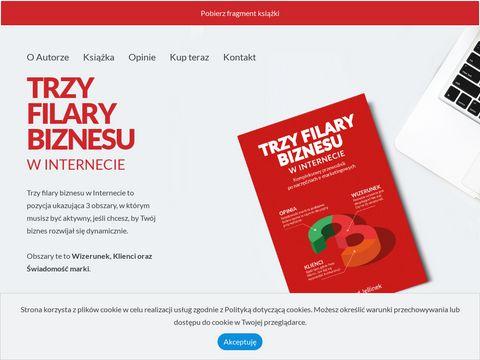 Trzyfilarybiznesu.pl promowanie firmy w internecie