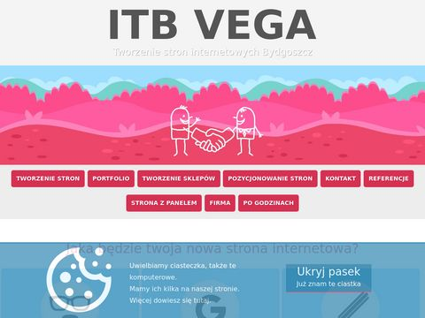 ITB Vega tworzenie stron internetowych w Bydgoszczy