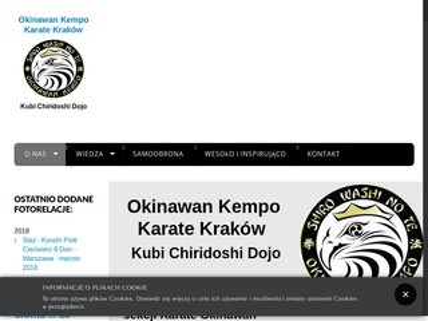 Okinawskie-karate-krakow.pl