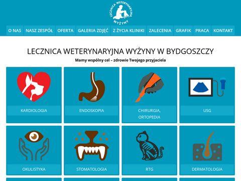 Lecznicawyzyny.pl specjalista leczenia fretek