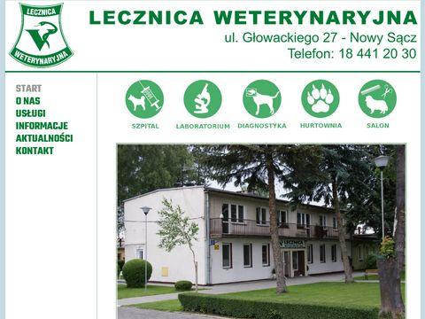 Lecznica-nowysacz.pl Andrzej Huza
