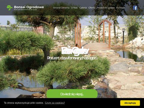 Bonsaiogrodowe.pl drzewka do ogrodu