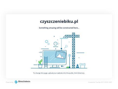 Czyszczeniebiku.pl - usuń negatywną opinię w BIK