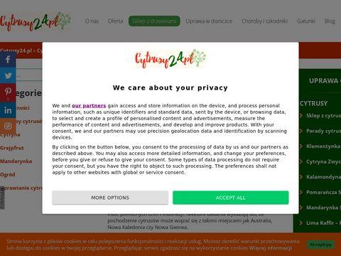 Cytrusy24.pl - wszystko o uprawie doniczkowej