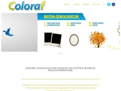 Coloraf - Fotografia szkolna, drzewo genealogiczne
