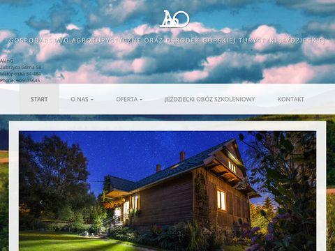 Alano.net.pl obozy