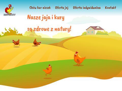 Fermabrychcy.pl - Ferma jaj i drobiu Brychcy zaprasza