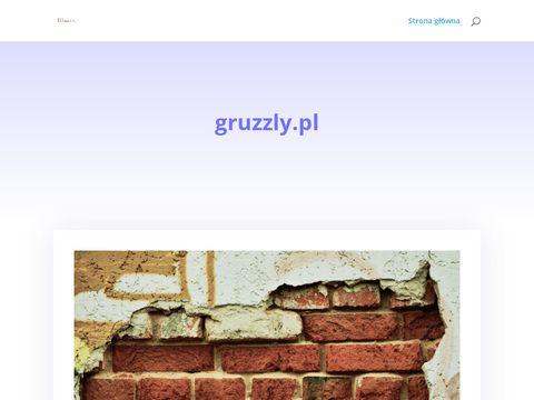 Gruzzly.pl wywóz gruzu Warszawa