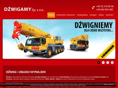 Dzwigamy.pl