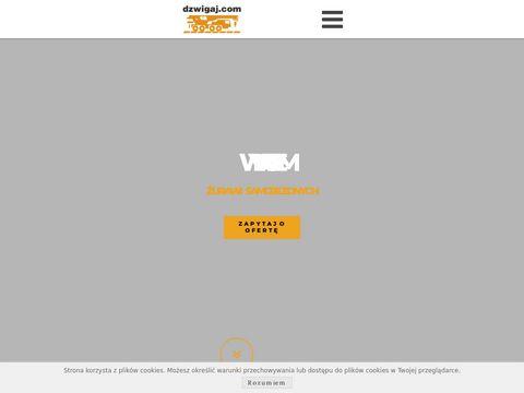 Usługi Dźwigowe Gdynia