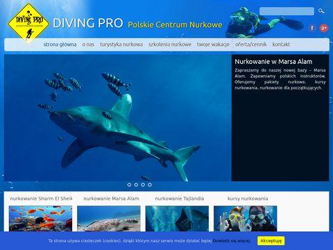 Diving Pro - nurkowanie Egipt