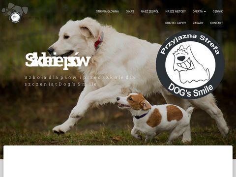 Dogssmile.pl szkoła dla psów