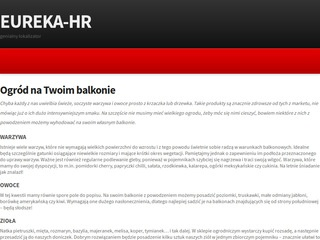 Eureka-hr.pl outsourcing bhp