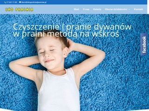 Ekopralniadywanow.pl pranie tapicerek