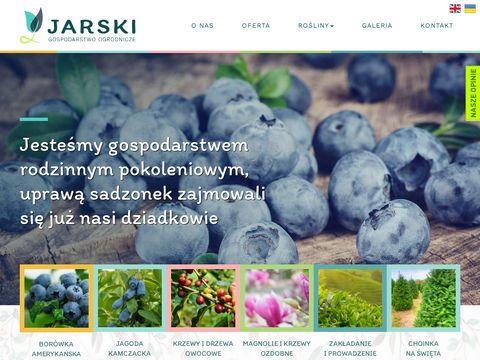 Zielonykrzaczek.pl - sadzonki krzewów