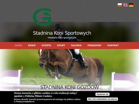Skgozdow.pl konie sportowe skokowe - stadnina