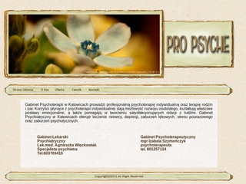 Propsyche.Katowice.pl - psychoterapia, psychiatra