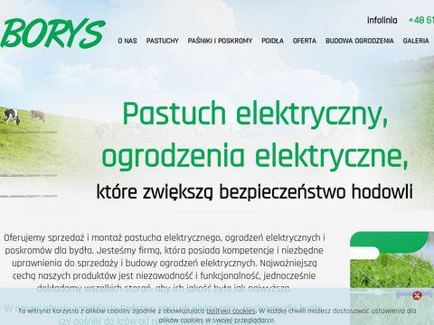 Pastuchyborys.pl drut płot elektryczny