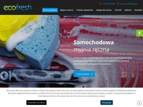 Eco Fresh myjnia ręczna samochodowa Ryki