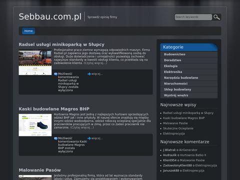 Podnosnikkoszowykrakow.pl