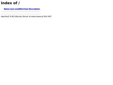 Voseo.pl agencja interaktywna projektowanie stron