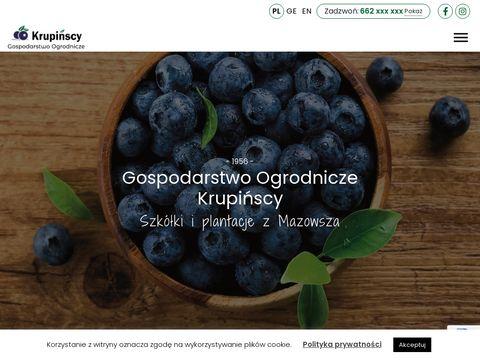 Krupinscy.com sadzonki borówki amerykańskiej