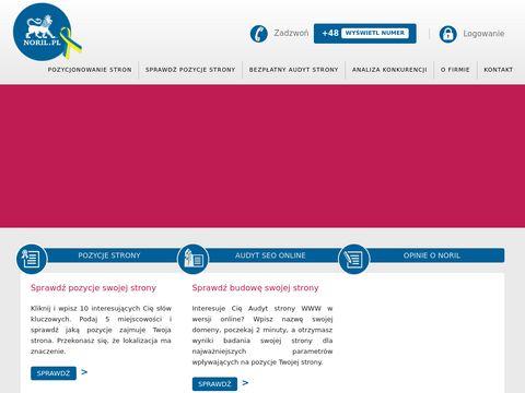 Noril.pl pozycjonowanie Gdynia