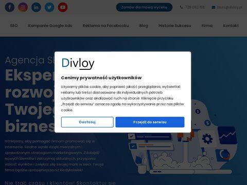 Divloy.pl pozycjonowanie Google FB Ads