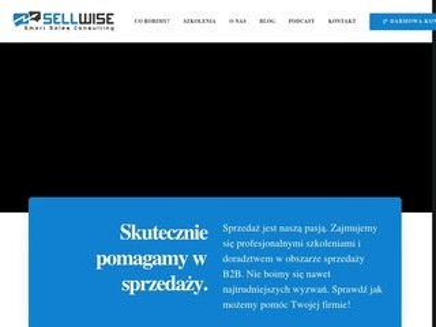 Sellwise.pl doradztwo konsulting i szkolenia