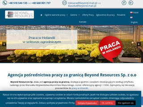 Beyondresources.pl praca w Holandii